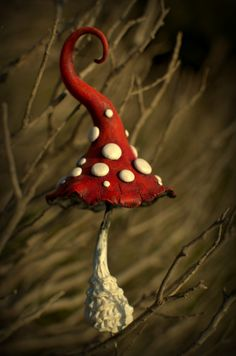 Red white fantasy mushroom for fairy gardens,pot decor, interior or exterior inhabitant.Elves,gnomes,fairies and of course trolls are hishers soulmates.  Made from polymer clay and hand painted with acrylic paints,sealed with three layers of varnish.Embedded with aluminium wire to place in flower pot or somewhere else to give a bit of magic. Indoor and outdoor use   Its about 13 cm tall and 6 cm wide.  Take a look at other mushrooms in my shop…