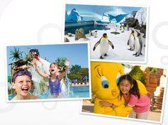 Win a Gold Coast Family Holiday or a Soda Stream