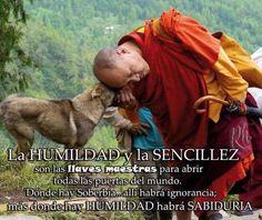 humildad & sencillez