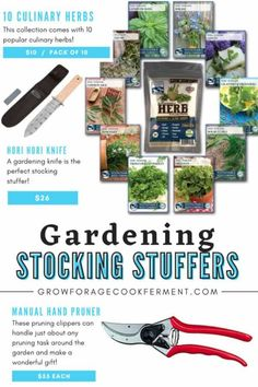 This holiday gift guide for backyard gardeners will give you all kinds of ideas for your small space gardening and permaculture friends. Find ideas for small gardening tools (great stocking stuffers!), seed starting kits, books, and more. You'll find the perfect holiday or Christmas gift for the gardener in your life. Small Space Gardening, Gardening Tools, Holiday Gift Guide, Holiday Gifts, Seed Starting, Garden Accessories, Permaculture, Amazing Gardens, Stocking Stuffers