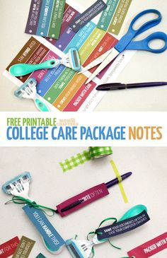 Oh, my these are so Punny! Print these humorous, pun-intended college care package labels for Schick disposable razors and other college care package essentials ideas | Free printable sponsored by Schick®: #SchickSummerSelfie