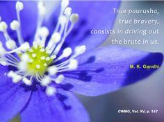 True Paurusha, true bravery consists in driving out the brute in us. - Mahatma Gandhi, CWMG, vol. XV, p. 157