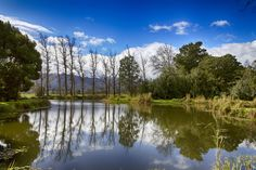 Photograph Cape Winelands by Stefano Geminiani on 500px