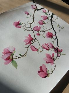 永生之酒 的涂鸦王国作品《玉兰》Saucer Magnolia like the one I have in southern Ontario in Canada...over 15 feet tall.: