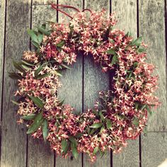 Australian Christmas bush wreath