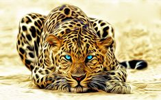 El mágico universo del arte digital - Leopardo | Banco de Imagenes (shared via SlingPic)