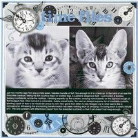 A Project by Candice Greenway from our Scrapbooking Gallery originally submitted 04/24/08 at 06:49 AM