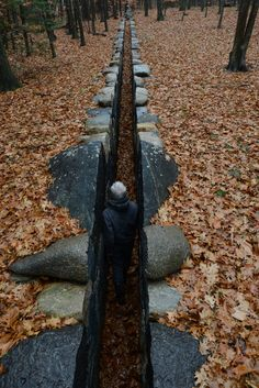 Andy Goldsworthy in Leaning into the Wind, a Magnolia Pictures release (photo courtesy of Magnolia Pictures; © Andy Goldsworthy, all rights reserved) Land Art, Art Et Nature, Nature Artwork, Andy Goldsworthy Artworks, Landscape Art, Landscape Design, Art Environnemental, Ephemeral Art, Wow Art