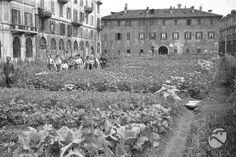 Milano - seconda guerra mondiale - orti in città a Brera
