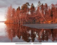 Stock Photo: Early spring forest on the shore of a lake in Finland. Trees colored red at sunset and reflection on the lake.