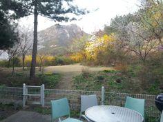 Living in Seoul, South Korea, Bukhansan mountain area, 15 minute drive from Seoul City Hall, spring 2014...ready to a backyard parry