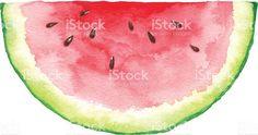 Risultati immagini per watermelon watercolor