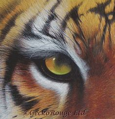 Tiger cross stitch by David Finney 'Eye of the Tiger' cross stitch kit