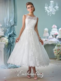 Sleeveless tea-length lace over tulle A-line dress with lace illusion bateau neckline, lace illusion back with covered buttons, natural waist belt with center bow, full skirt with scalloped hem. Sizes: 0 – 20 Colors:Ivory, White