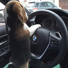 """""""Driving with my daddy!"""