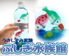 Fiji Water Bottle, Summer School, Cool Kids, Crafts For Kids, Blue Prints, Crafts For Children, Crafts For Toddlers, Kid Crafts