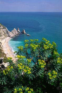 le Marche vantano 18 bandiere blu, 180 chilometri di costa, 26 località che si affacciano sul Mare Adriatico, il porto marittimo di Ancona e 9 porti turistici: questa l'offerta certificata di qualità per la vacanza al mare nelle Marche