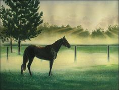 Drawing a Sunrise with Water Soluble Colored Pencils – Part 2