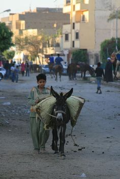 Egyptian boy and its mule by Julien Geneste on 500px