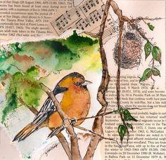 """Bullock's Oriole"" -  Watercolor Collage - Gail Van Camp"