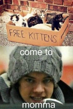 ;) Harry you can have a kitty