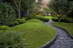 Shaded grey path surrounded by dark green: hedge, grass, trees, buxus and and fern.