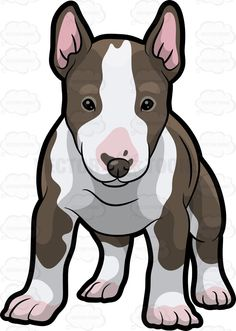 An Adorable Bull Terrier Puppy Perros Bull Terrier, Chien Bull Terrier, Bull Terrier Puppy, Fox Terrier, Pitbull Drawing, English Bull Terriers, Cute Animal Drawings, Dog Signs, Beautiful Dogs