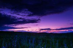 Blue by intrud3r intrud3r on 500px
