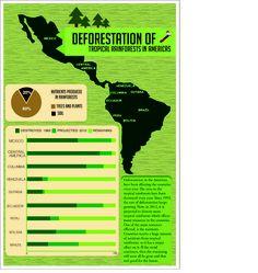 Deforestation ~ Tropical Rainforests