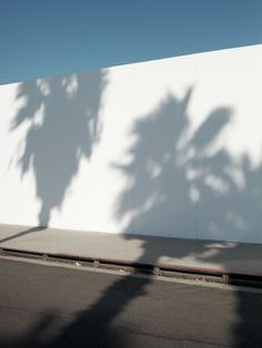 "Michael Bodiam, ""Untitled (Palm shadows)"", from ""California"" Travel Photography, Beauty Photography, Mood Images, White Aesthetic, Light And Shadow, Shades Of Blue, My Idol, In This Moment, Wallpapers"
