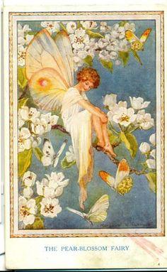 POSTCARD Margaret Tarrant Pear Blossom Fairy