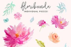 Floribunda Watercolor Flowers by Angie Makes on Creative Market