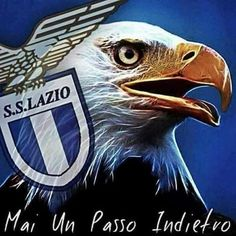 Soccer Players, Football Team, Psg, Ss Lazio, International Soccer, Most Popular Sports, Soccer Coaching, Soccer World, Pictures