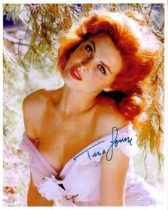What do people think of Tina Louise? See opinions and rankings about Tina Louise across various lists and topics. Tina Louise, Natural Redhead, Beautiful Redhead, Beautiful Women, Beautiful Red Hair, Ginger Grant, Ann Margret, Classic Actresses, Ginger Hair