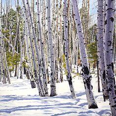 Winter Aspens by Daniel Fishback Oil ~ 36 x 36