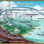 Science for Kids The Water Cycle For Kids How It Works Diagram Facts Elementary Science, Science For Kids, Earth Science, Science Activities, Science Ideas, Science Daily, Montessori Elementary, Science Curriculum, Science Resources