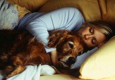 Seu cachorro deve dormir com você