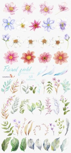 FLORAL FIELD collection  - Illustrations - 10