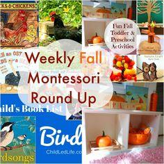 The Montessori on a Budget blog. Sophie here you go!