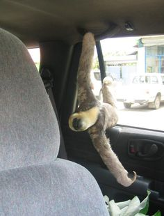 Finally - I understand those handles - they are sloth handles - awesome - I so need a sloth