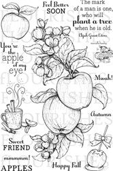 Apple of my Eye stamp set from Flourishes $17.99