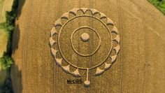 A crop circle reported on July 15, 2014, near Rodmarton, Gloucestershire, United Kingdom. (Credit: Mr Gyro - www.MrGyro.co.uk/Crop Circle Connector)