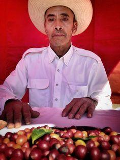 """Cafetero"" ~ Xilitla, Mexico"