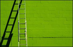 lime green wall