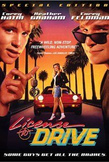 A teen decides to go for a night on the town with his friends despite flunking his driver's test.