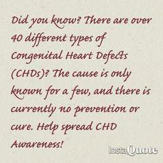 #chdawareness www.facebook.com/bryleesbravebattle #1in100 #chdawarenessweek