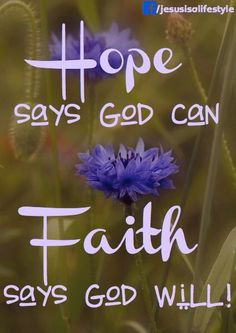 Hope says God can. Faith says God will! Discouragement: is where Hope is lost because we take our eyes of of God and focus on self.Faith keeps God's promises in our hearts and mind. Put on the armour of God each new day, Ephesians Bible Verses Quotes, Faith Quotes, Faith Sayings, Hope Quotes, Faith Hope Love Quotes, Gratitude Quotes, Bible Scriptures, Religious Quotes, Spiritual Quotes