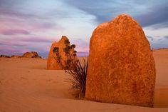 Pinnacles at Dusk by Frank Richardson, The Pinnacles, Nambung, Western Australia