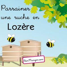 BienManger.com éditions - Parrainer une ruche en Lozère miel de montagne - récolte 2016