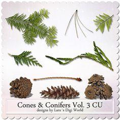 Digital Art :: Element Packs :: Cones & Conifers Vol. 3